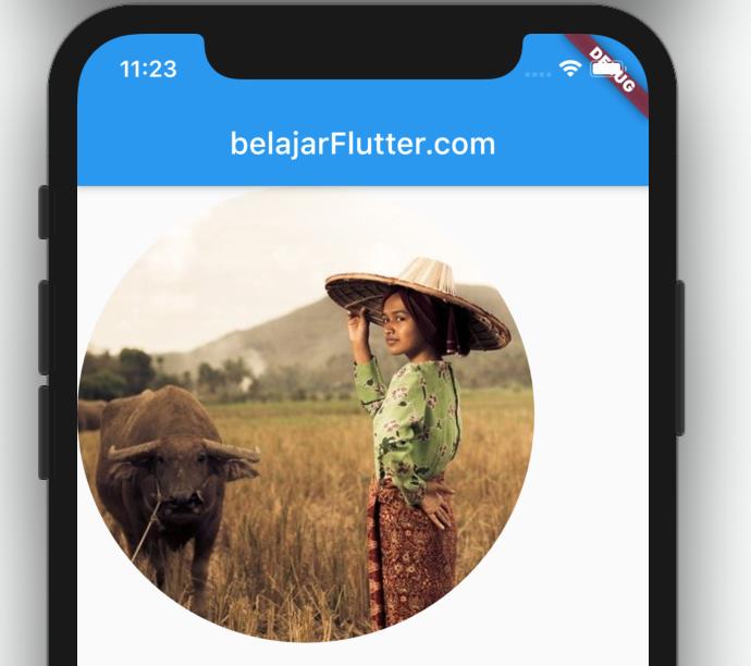 contoh manipulasi bentuk gambar flutter