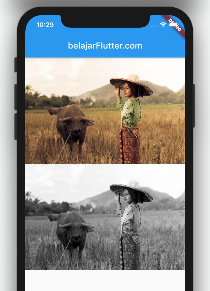 manipuli warna gambar flutter